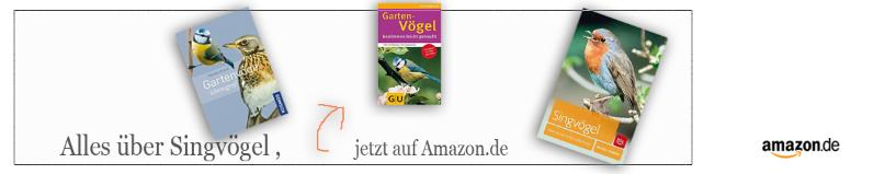 Singvögel Bücher