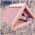 vogelhaus-3