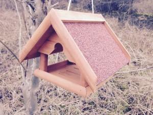 Vogelhaus wählen, Überblick behalten