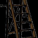 Vogelhaus aufhängen, richtige Position wählen